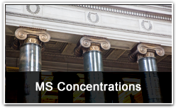 MS Concentrations