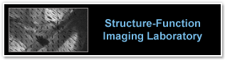 Structure-Functioning Imaging Laboratory